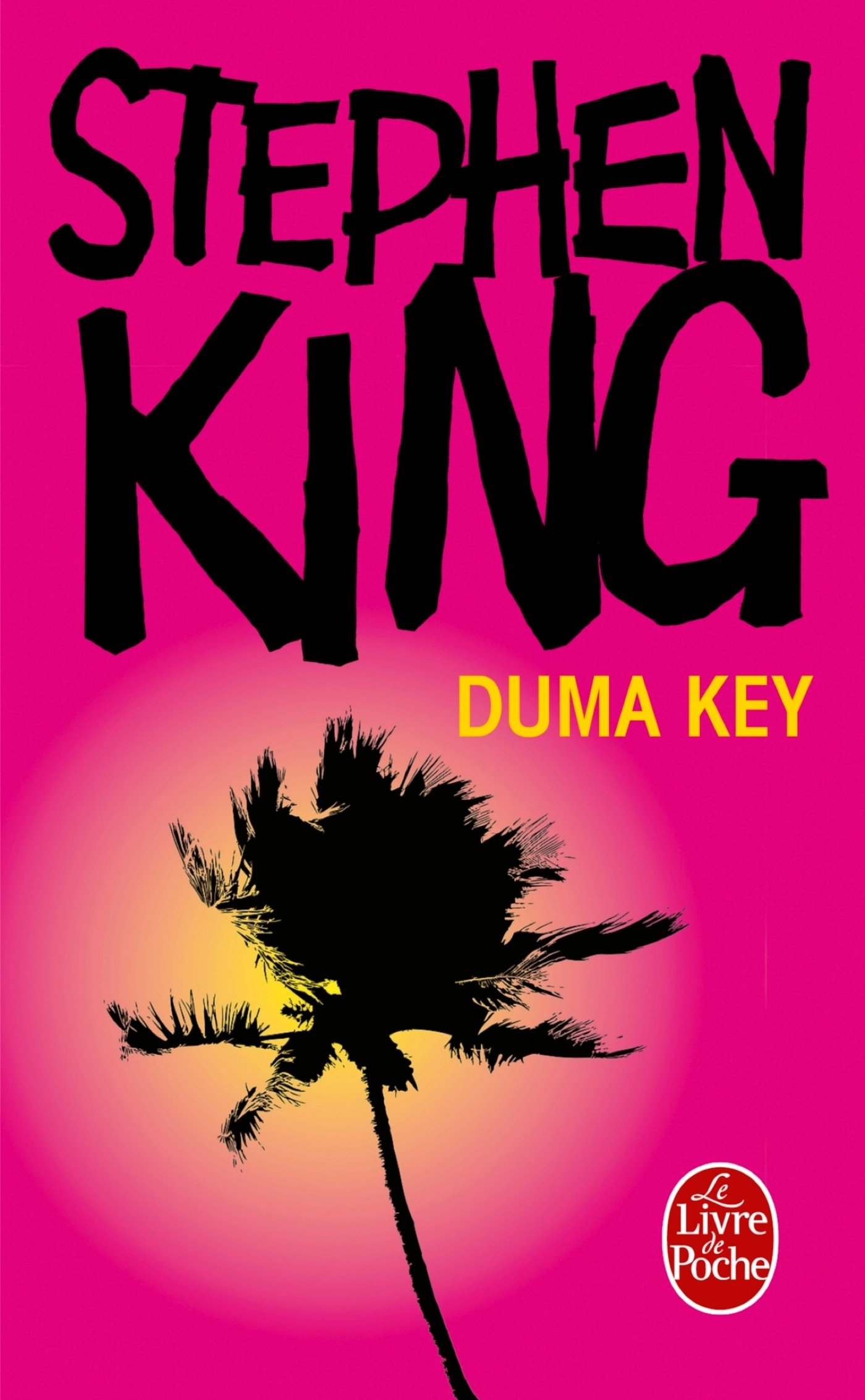 Duma Key - couverture